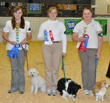 4-Hers and their dogs with their ribbons at a 4-H Dog show.