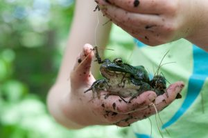 Child with muddy hands holding a frog; photo by Edwin Remsberg