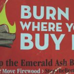 Warning sign: Burn it where you buy it. Stop the Emerald Ash Borer. Don't move firewood. StopTheBeetle.info