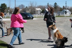 4-Hers with dogs at Dog Camp