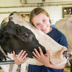 Youth with dairy cow