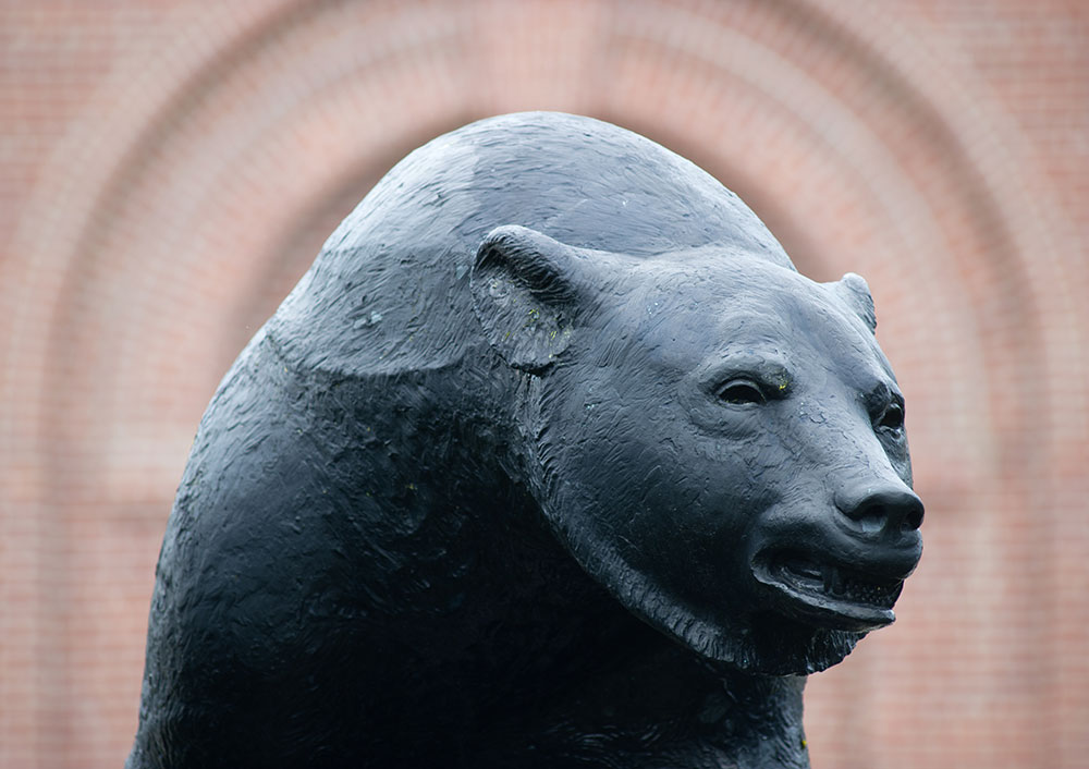 UMaine Black Bear statue