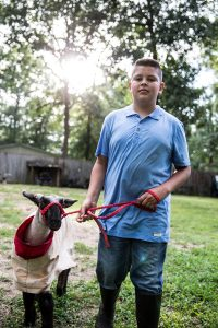 4h member with a sheep