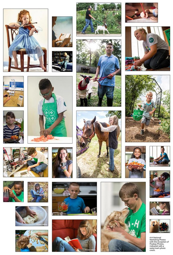 photo collage of all age groups for the Learn at Home resources section of 4-H