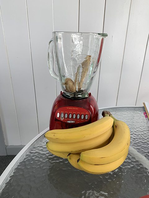 A blender with a bunch of bananas.