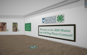 Entry page for Art Steps Maine State 4-H Dog Photo Contest