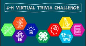 4-H Virtual Trivia Challenge Logo