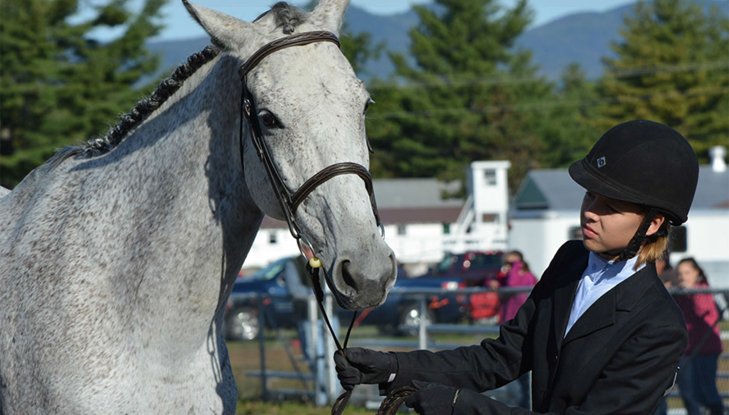4-h'er with horse