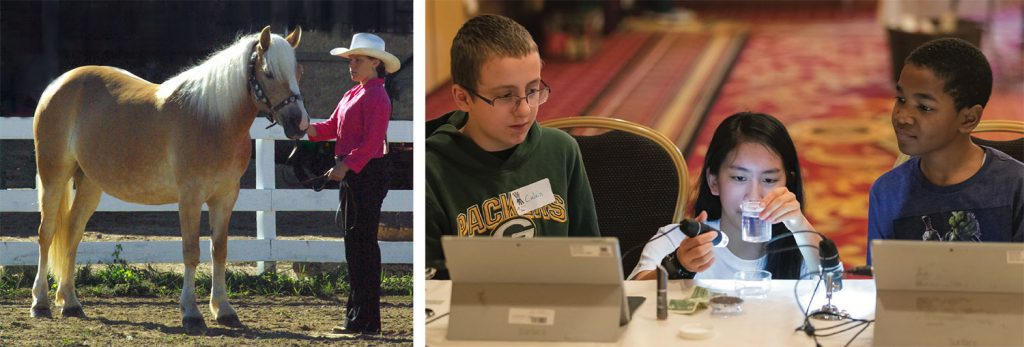 4-H'er with horse and 4-H'ers working on laptops