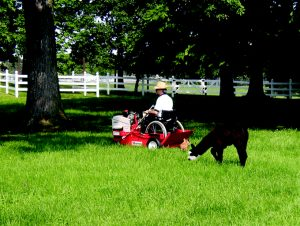 farmer in wheelchair mowing with an adapted mower