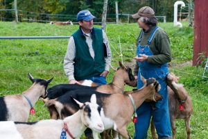 Extension educator with goat producer and goats; photo by Edwin remsberg