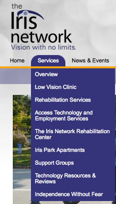 Screen Shot of the Iris Network brochure: Vision with no limits.