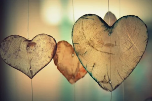 heart shaped wood pieces