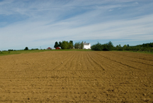 tilled field at Highmoor Farm