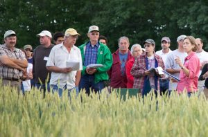 Participants at the UMaine Sustainable Ag Field Day
