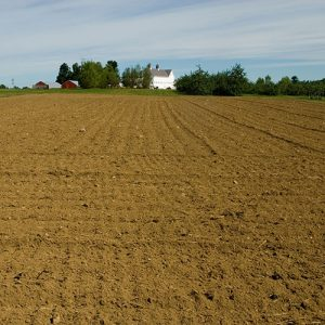 plowed field at Highmoor Farm, Monmouth, Maine