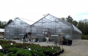 "O'Donal""s Greenhouse"