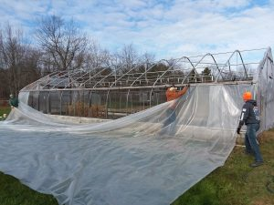 Greenhouse plastic removal
