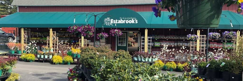 Estabrook's Garden and Greenhouse