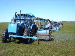 Mechanical harvester