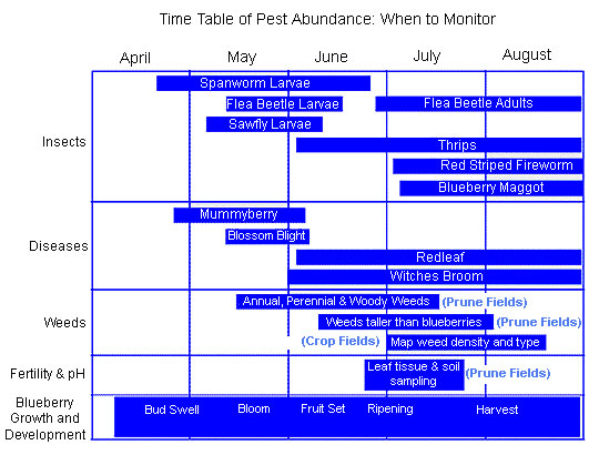 Time table of pest abundance and when to monitor.