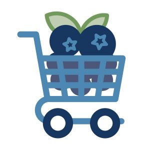 icon graphic for the blueberry marketplace landing page