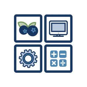 icon for Blueberry Tools
