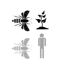 Icon representing the herbicide chart