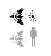 Icon representing Fungicide Chart