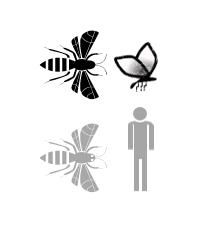 Icon representing the pesticidechart
