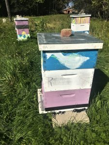 colorfully painted bee hives in a field (3 stacks)