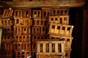 Blueberry crates