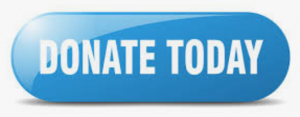 Donation Link button