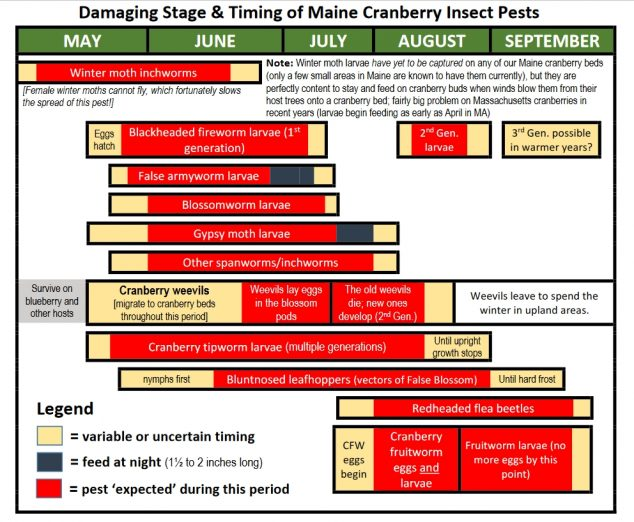 Visual aid showing the damaging stage and timing of Maine cranberry insect pests (photo contents translated into text on the remainder of the page)