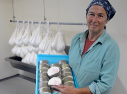 Cheese maker, commercial dairy goat operation, York Hill Farm