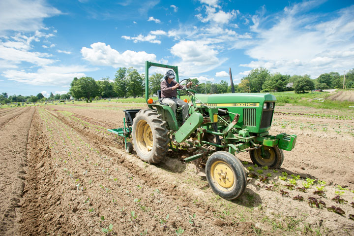 farmer driving a tractor in a field