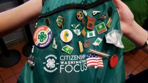 CWF PI bag with state pins