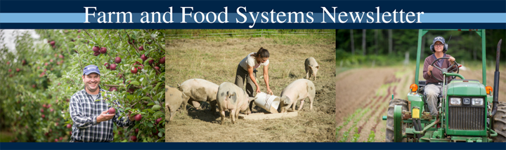 Farm and Food Systems Newsletter Banner, images of maine farmers, by an apple tree, feeding pigs, and driving a tractor.