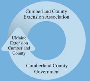 Diagram showing the connection between the Cumberland County Extension Association, Cumberland County Government, and UMaine Extension Cumberland County