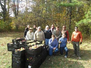 Maine Harvest for Hunger volunteers with crates of freshly picked apples