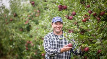 Apple producer in his orchard