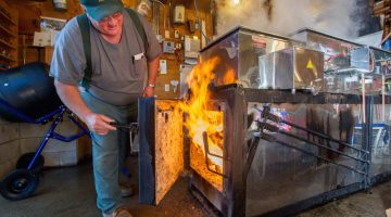 Merrifield Farmer making maple syrup.