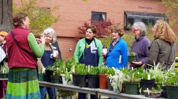 Master Gardeners helping customers shop for plants