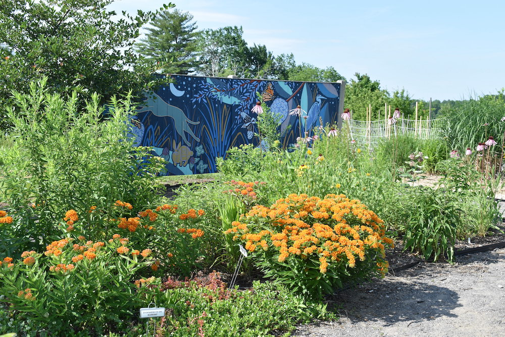 Tidewater demonstration gardens with painted mural in background