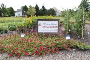 All America selection garden sign