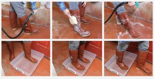 series of images show options for cleaning/sanitizing boots, including hosing down, soaping with a brush, and rinsing off, as well as stepping through a sanitizing bath