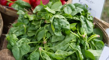 fresh spinach for sale at a farmers market