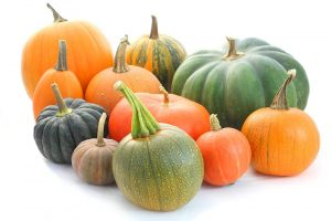 a variety of winter squashes