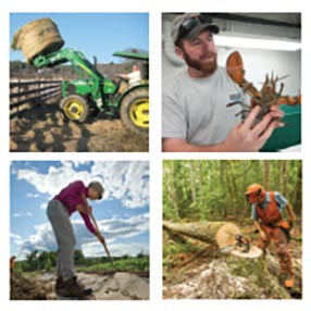 a collage, with 4 images, displaying different aspects of the Agriability segment of Cooperative Extension