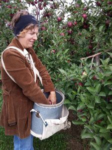 Apple picker with picking bucket